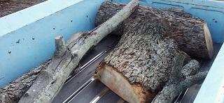 emptying pecan wood