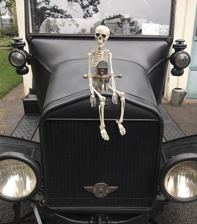 T skeleton